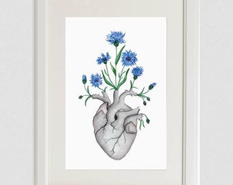 Blue Flower Anatomy Heart Print | Floral Poster Gift, Nature Estonia Field Cornflower Unique Artwork, Oddity Curiocity Human Art Creepy Goth