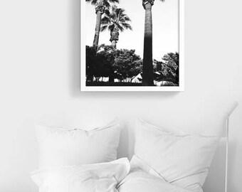 Paradise Las Palmas ART PRINT | Palm Trees Black and white  Photography | Digital file | Modern California Palm Tree Art Print Poster