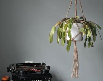 Basic macramé planthanger, jute macrame, jute plant hanger, jute hanger, macrame knots, bohemian homedecor, jute rope, hanging plant