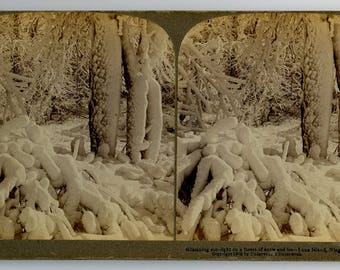 Stereoview Card, Luna Island, Niagara Falls, 1902, Underwood and Underwood