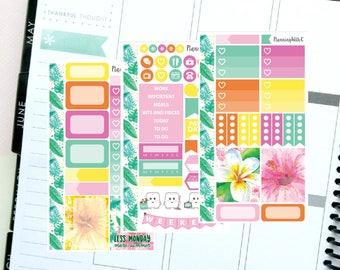 """Personal/Mini Kit """"Fruit Punch"""" Tropical Summer Themed Planner Stickers for Erin Condren, Kikki K, Filofax, Happy Planner, Websters Pages"""