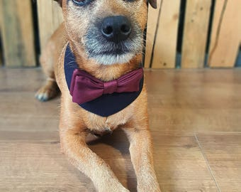 Dog wedding bandana. Dog costume. Dog bow tie. Dog Outfit. Dog  bandana. Dog collar. Dog Wedding Attire. Dog tuxedo. Maroon Navy Dog Collar