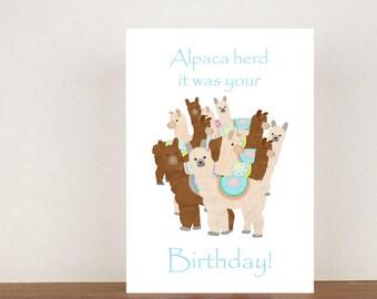 Alpaca herd it was your birthday, cards, greeting cards, blank card, birthday card, alpacas, llamas, alpaca card, llama card