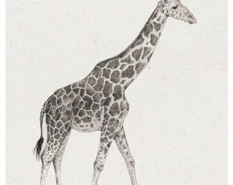 giraffe illustration print A5