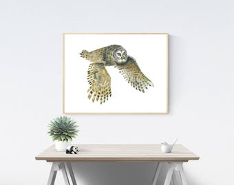 Owl Wall Art, Printable Instant Digital Download Art - Watercolour Owl, Wall Art, Home Decor
