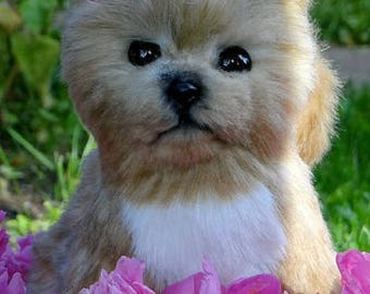 """Little Puppy """"Coffee Latte"""""""