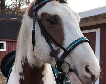 Custom Crystal Bridle