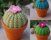 Crochet Cactus, Home Decor, Housewarming Gift