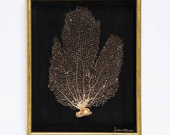 Ocean Inspired Home Decor. Authentic Framed Sea Fan (11x14)