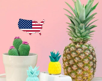 USA - Shell pineapple for American cube charger / gift idea! Pineapple charger