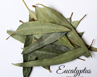 Eucalyptus Leaves 50g