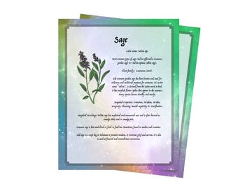 2 Pages For Your BOS ~Sage Herb Bundle~Grimoire