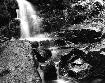White Mountain stream is a long exposure taken by an avid teenage hiker in 1975 in the Presidential Range of New Hampshire's White Mtns USA.