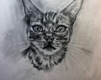 custom graphite portrait, bengal cat