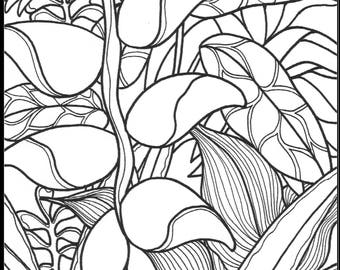 Instant Download - Adult Coloring Page - Lobster Claw Plant Tropicals