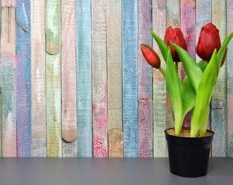 5 Tulip Photographs Instant Download Bundle Under One Dollar!