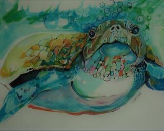 Tuttle the Turtle