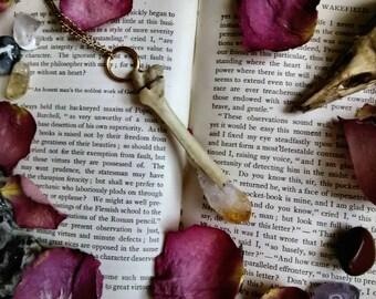 Real Animal Bone and Citrine Crystal Necklace - Animal Bone Jewelry