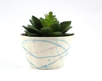 Small Cactus Planter