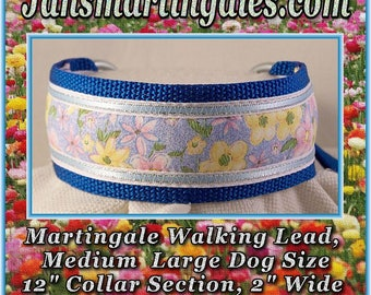 Jansmartingales,  Dog Collar Leash Combination Walking Lead,  Medium Large, Small Greyhound, Large Whippet, wblu051