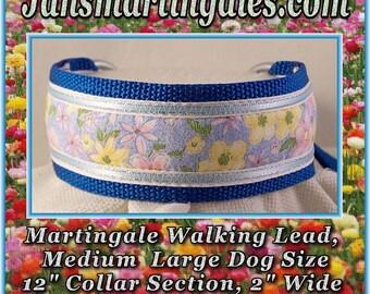 Jansmartingales,  Dog Collar Leash Combination Walking Lead,  Medium Large, Small Greyhound, Large Whippet, wblu051