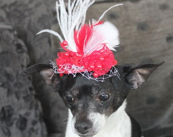 Cute red color  mini  hat with    feather and   bow  for dog or cat