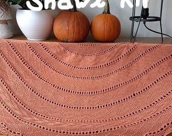 Pumpkin Spice - SHAWL KIT  -- Silk/Cotton/Merino yarn (2 x 100 gr /640 yards)