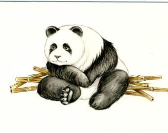 original watercolor gouache illustration for children's book Panda sitting with bamboo