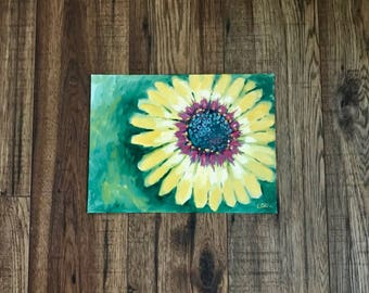 African Daisy, Blue Eyed Daisy, Original Oil Painting, Daisy Painting