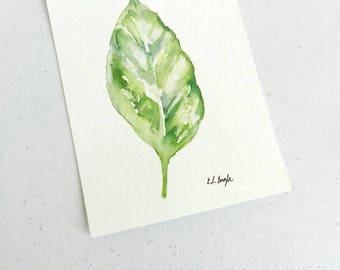 watercolor leaf, green leaf painting, original watercolor artwork, basil illustration, kitchen herb art, illustrated herbs, kitchen decor