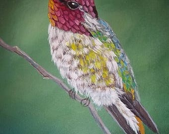 "Original 8x10 ""Anna"" Hummingbird"