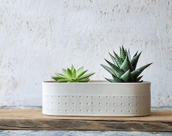 White Ceramic Planter, Large Succulent planter, Modern Ceramic Planter, White indoor planter, oval planter, Indoor gardening, Gardening Gift