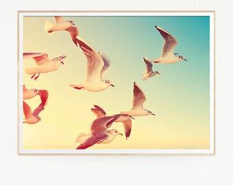 Birds Gulls Wall Decor Print Poster Tropical Beach Marine Art Landscape Seagulls Nature Sea Minimalist Photo Photography Sky Sun Sunset 1032