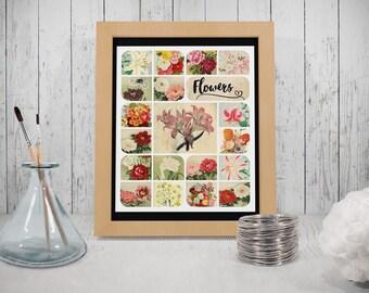 Vintage floral poster, 8.5x11 (Letter) printable art download, vintage flowers, retro art print, digital wall hanging, vintage images 300dpi