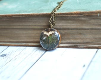 feather necklace , extra long necklace , hippie charm pendant , bird lover gift , bird gifts for women ,