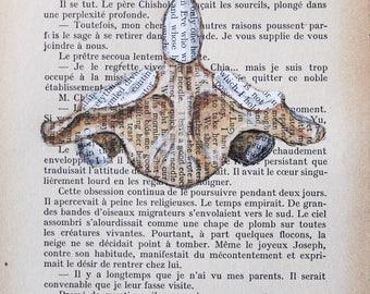 Original Medical Illustration using antique books - Uniting the Gap - The Dens- Print
