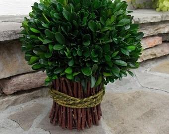 Preserved Boxwood Bouquet-Boxwood Topiary-Preserved Boxwood Topiary-Boxwood Bouquet-Green Bouquet-Wedding Decor-Christmas Table Decor