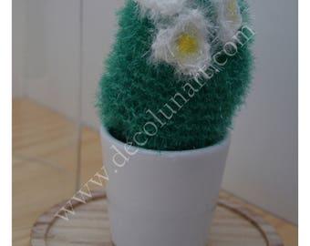 Du piquant et de l'originalité avec ce cactus éponge écologique tawashi