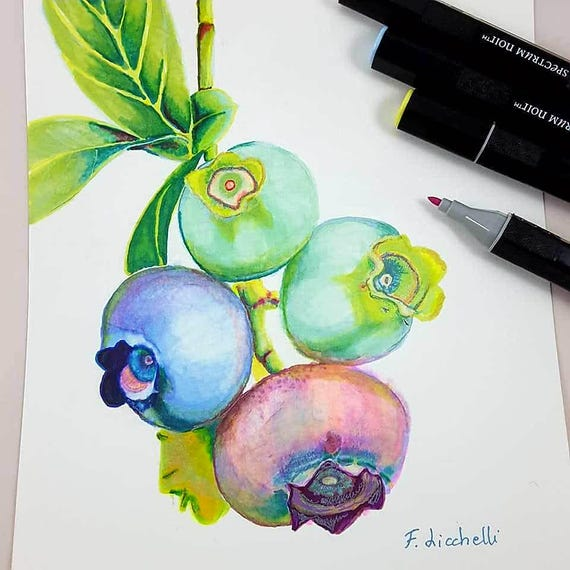 Blueberries painting. Original drawing by Fracesca Licchelli. Alchoolic markers on paper. Gift idea for birthday. Kitchen restaurant decor.
