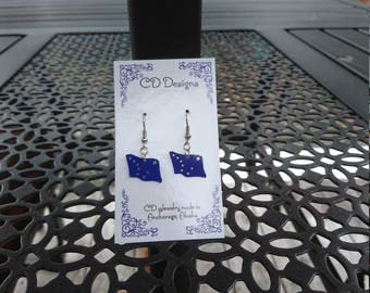 Alaska flag Cd earrings