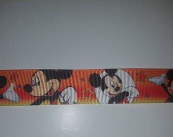Ribbon 25mm the meter mickey