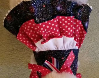 Doggie Red White and Blue Three Tier Dress