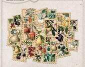 Printable Stamps For Envelopes, Vintage, Botanical Postage Stamps, Nature Lover Gift, Harvest Fruits And Vegetables, Instant Download
