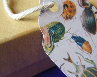 Ten Large Handmade Beetles Gift Tags - Early 20th Century Children's Book Illustrations - Insects/Natural History