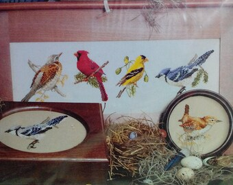 Kit-Song Birds, Counted Cross Stitch, 6 Birds, by Jeanette Crews Designs