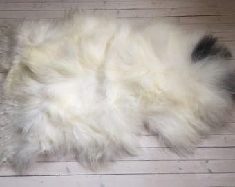 White black long haired sheepskin rug spael sheep skin throw 17236