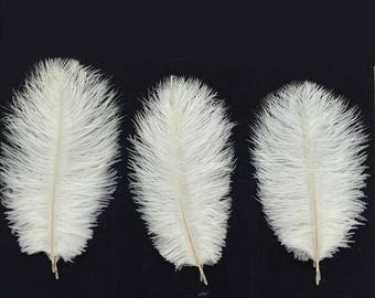 Pure White Ostrich Hiar Feather ,Home Festival Decorative DIY Material Feather 10 Feathers in one lot
