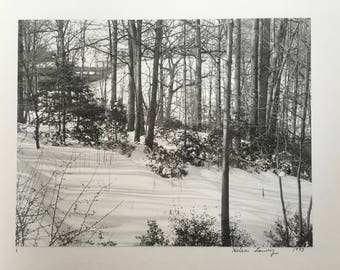 Vintage photography winter scene black and white photo snowy woods
