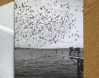 Starlings over Pier Greeting Cards - Pack of 5 with Envelopes