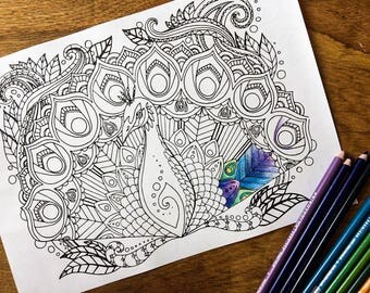 Adult colouring page, peacock coloring page instant digital download, intermediate adult colouring page animal art digital colouring page